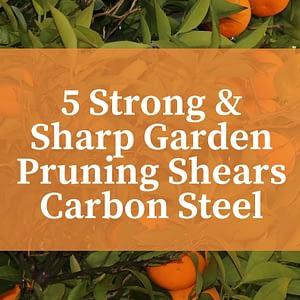 Garden Pruning Shears Carbon Steel
