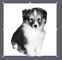 Puppy image embedded in vector shape
