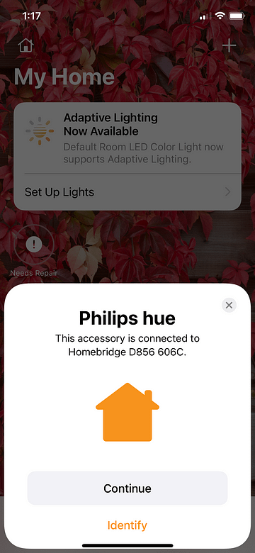 Connecting Homebridge to My Home Add the Philips Hue