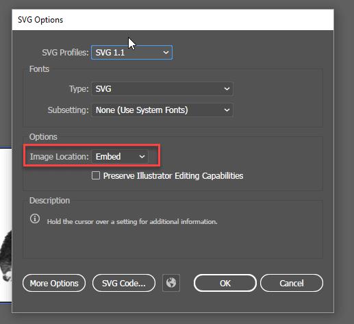 Adobe Illustrator SVG Options