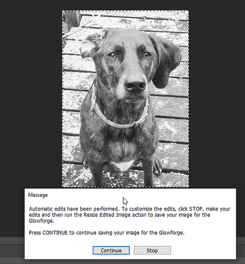 Dog Image Engraving Photoshop Edits Complete message