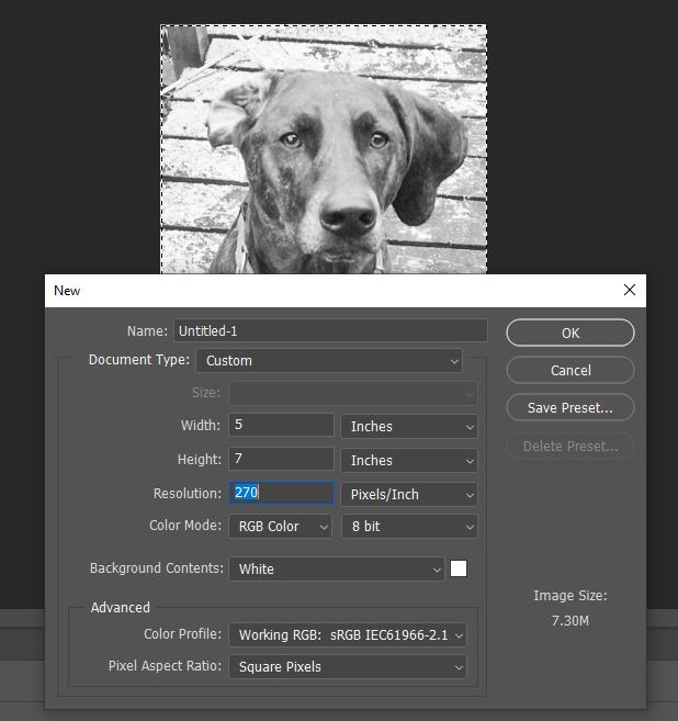 Photoshop Image Resize and Resolution settings