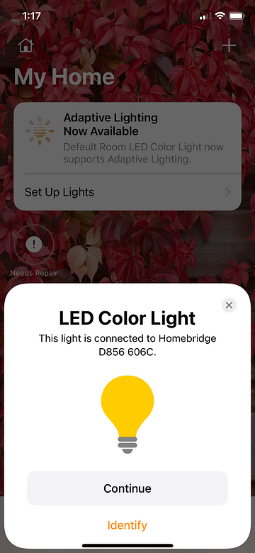 Connecting Homebridge to My Home Add LED Color Light