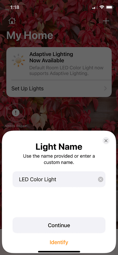 LED Strip Light Project Connecting Homebridge to My Home Add Light Name